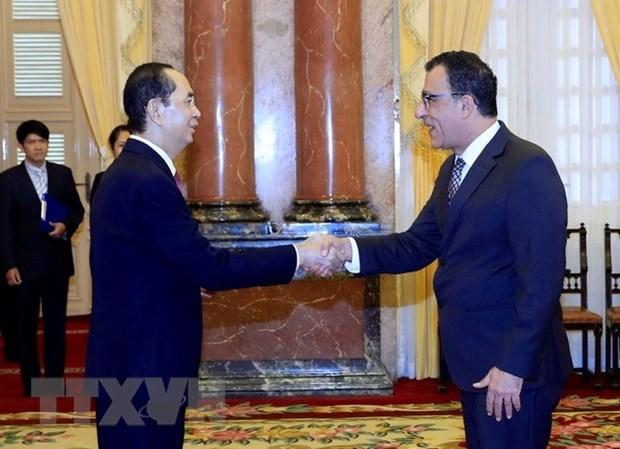Presidente vietnamita recibe credenciales de nuevos embajadores hinh anh 1