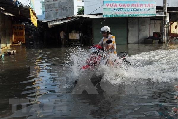 Ciudad Ho Chi Minh llama a inversiones en proyectos de prevencion de inundaciones y tratamiento de aguas hinh anh 1