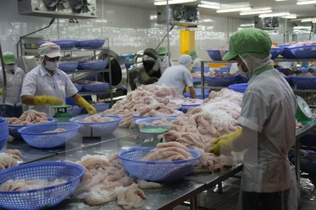 Exportacion de pescado Tra vietnamita supera los mil millones de dolares en siste meses hinh anh 1