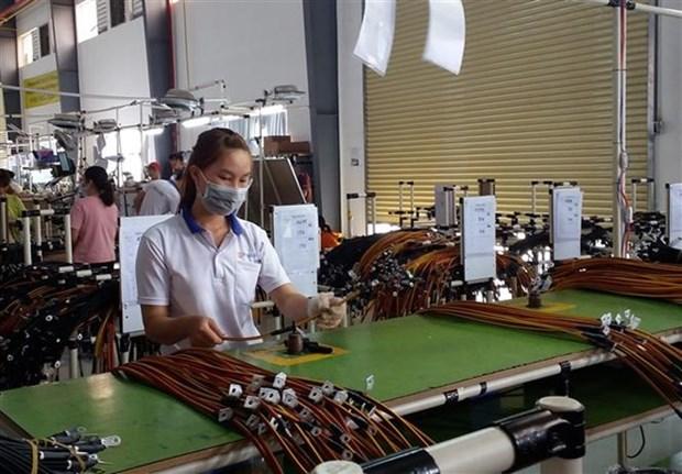 Provincia survietnamita reporta aumento significativo de inversion extranjera hinh anh 1