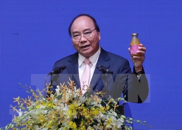 Premier de Vietnam pide a ciudad de Can Tho mayor apoyo para los inversores hinh anh 1