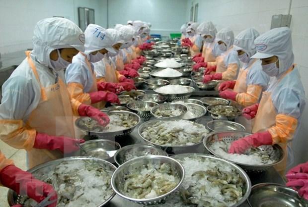 Vietnam enfrenta barreras tecnicas en exportaciones de camarones a Corea del Sur hinh anh 1