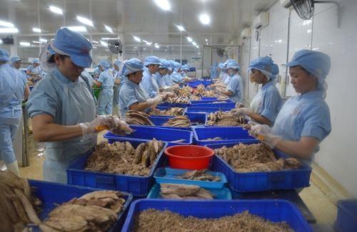 Retos de la acuicultura vietnamita para cumplir su meta de exportacion hinh anh 1