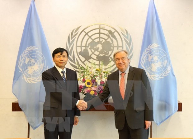 Resaltan desempeno de Vietnam en foros de las Naciones Unidas hinh anh 1
