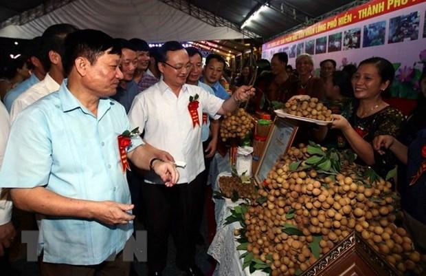 Celebran festival de longan en provincia vietnamita de Hung Yen hinh anh 1
