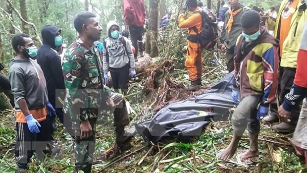 Un nino sobreviviente en accidente de avioneta en Indonesia hinh anh 1
