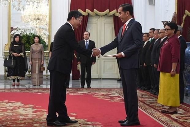 Presidente indonesio desea fortalecer cooperacion multifacetica con Vietnam hinh anh 1