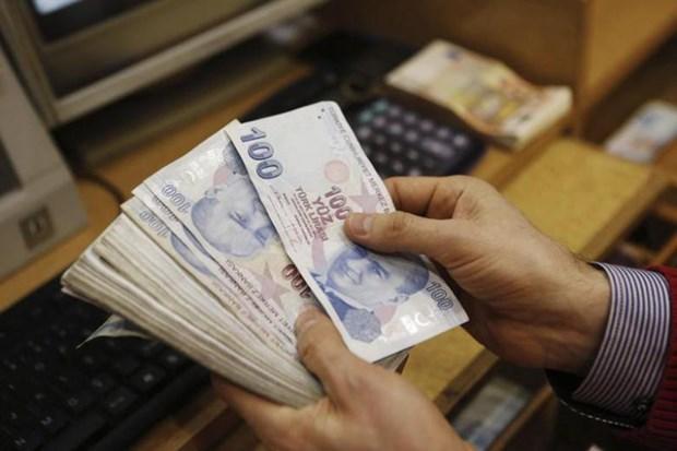Crisis financiera de Turquia no tendra efectos severos a naciones del Sudeste Asiatico hinh anh 1