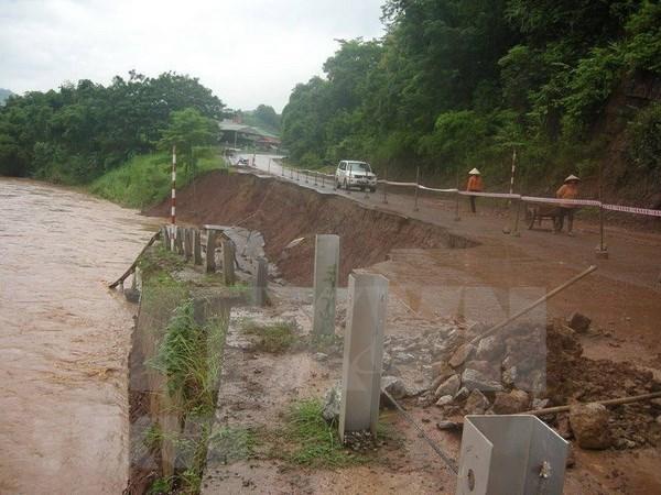 Reportan al menos seis muertos en Vietnam por el tifon Bebinca hinh anh 1
