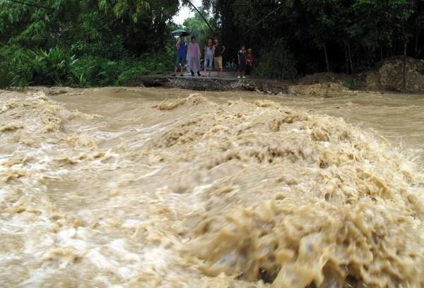 Vietnam sufrira de dos a tres tifones en el resto de 2018, segun pronosticos hinh anh 1