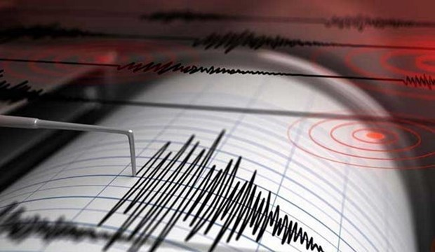 Al menos cinco muertos por terremotos en isla indonesia de Lombok hinh anh 1