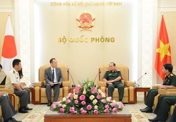 Expertos japoneses compartiran en Vietnam experiencias en misiones de paz de ONU hinh anh 1