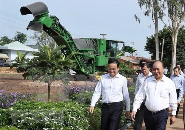 Premier de Vietnam visita modelos agricolas de alta tecnologia en Tay Ninh hinh anh 1