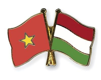 Conmemoran en Ciudad Ho Chi Minh Dia de Independencia de Hungria hinh anh 1