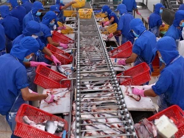 Crecen exportaciones de pescado Tra vietnamita a EE.UU. hinh anh 1