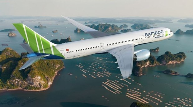 Aerolinea vietnamita Bamboo Airways iniciara operaciones en octubre proximo hinh anh 1