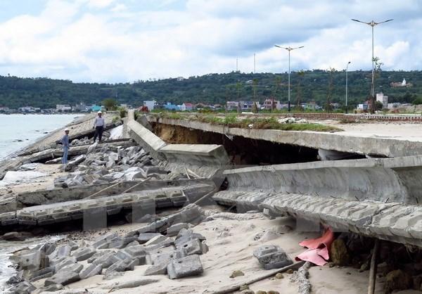 Provincia vietnamita acelera preparacion ante riesgo de deslizamiento de tierra hinh anh 1