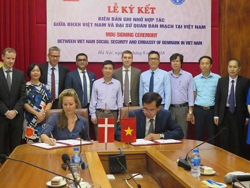Vietnam y Dinamarca firman un acuerdo de cooperacion sobre seguro medico hinh anh 1