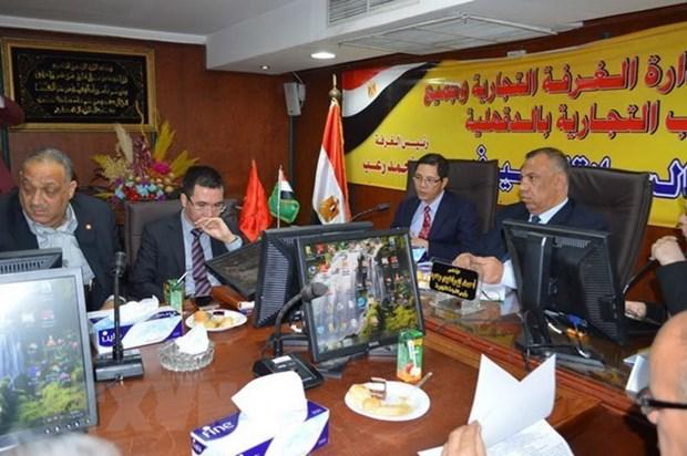 Vietnam y Egipto aspiran fomentar la cooperacion multifacetica durante visita del presidente Tran Dai Quang hinh anh 1