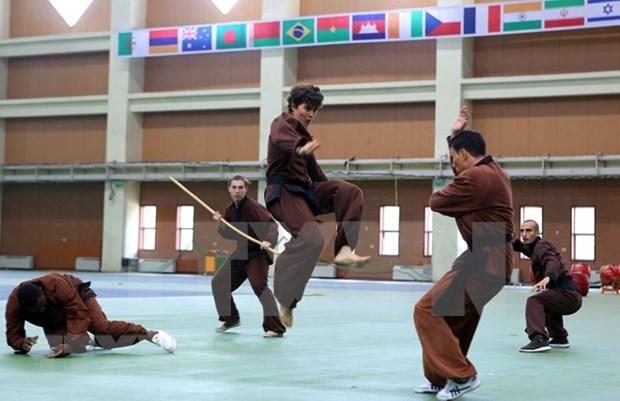 Inauguran en Hanoi Campeonato Internacional de Artes Marciales Tradicionales de Vietnam hinh anh 1