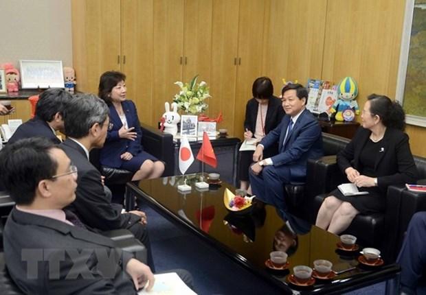 Delegacion de la Inspeccion del Gobierno de Vietnam visita Japon hinh anh 1