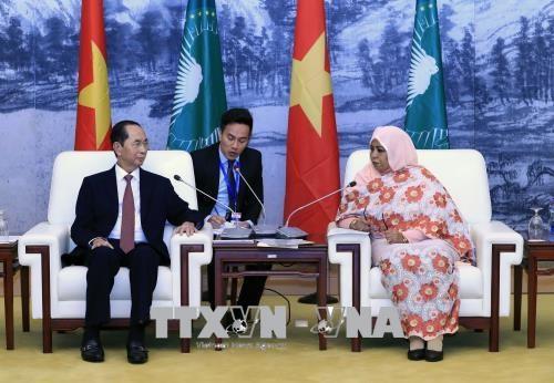 Vietnam concede importancia al fomento de nexos con Africa, afirma presidente hinh anh 1