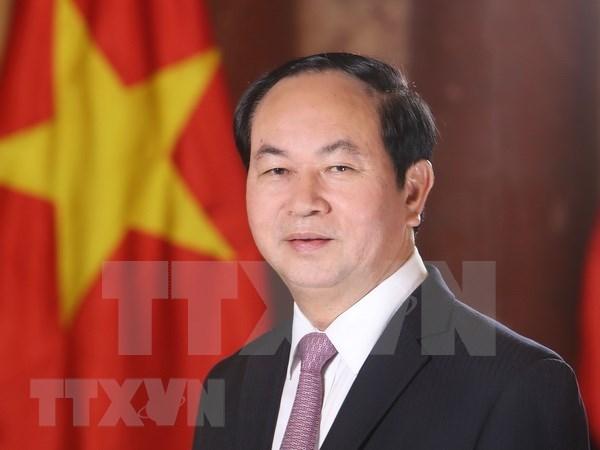 Proxima visita de presidente Dai Quang evidencia que Vietnam prioriza lazos con Egipto hinh anh 1