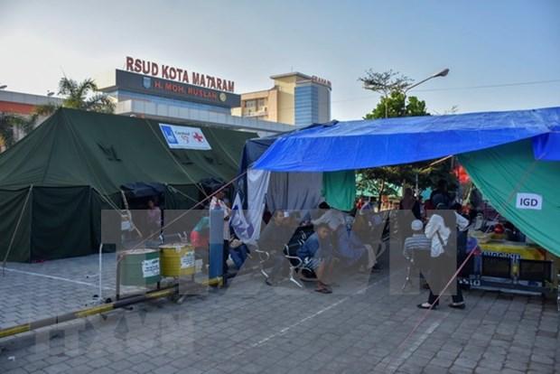 Se eleva a 555 los fallecidos por sismos consecutivos en Indonesia hinh anh 1