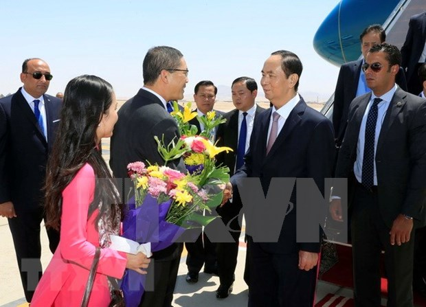 Presidente de Vietnam inicia su visita estatal a Egipto hinh anh 1