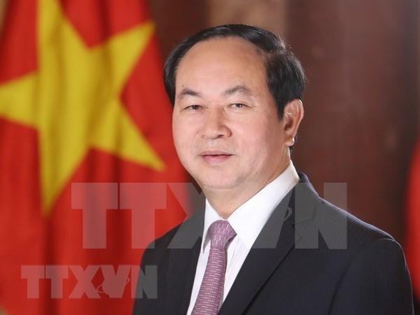 Presidente de Vietnam reitera el significado de su visita estatal a Egipto hinh anh 1