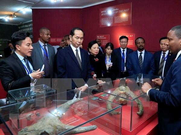 Presidente de Vietnam concluye visita estatal a Etiopia hinh anh 1