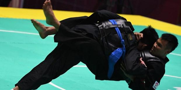 ASIAD 2018: Pencak silat gana bronce para Vietnam hinh anh 1