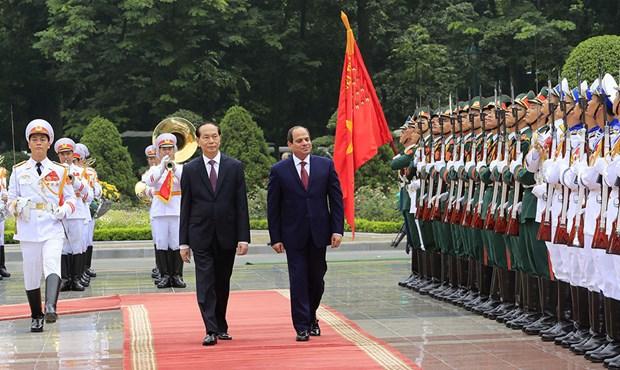 Visita del presidente Tran Dai Quang abre perspectivas para nexos Vietnam – Egipto, segun prensa egipcia hinh anh 1