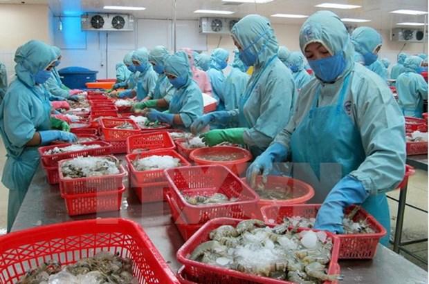 Sector acuicola de Vietnam se dirige al desarrollo sostenible ante cambio climatico hinh anh 1