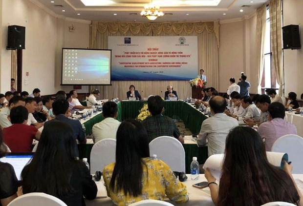 Comparten Vietnam y Paises Bajos experiencias en desarrollo de cooperativas hinh anh 1