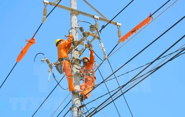 Grupo de Electricidad de Vietnam: empresa estatal mas transparente del pais hinh anh 1