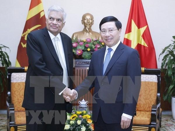 Vietnam aspira a fomentar las relaciones con Sri Lanka, afirma el vicepremier hinh anh 1