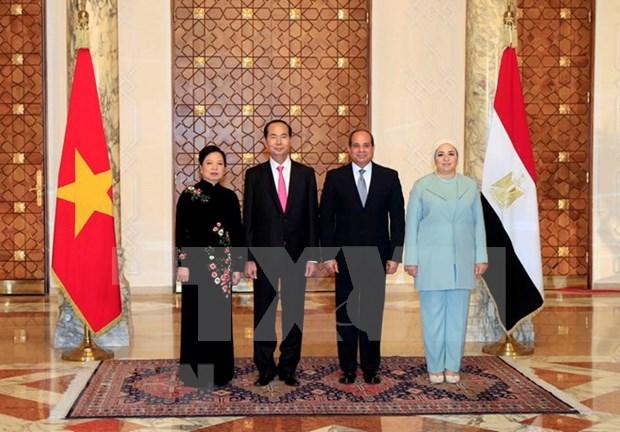 Vietnam y Egipto acuerdan promover cooperacion en todas las esferas hinh anh 1