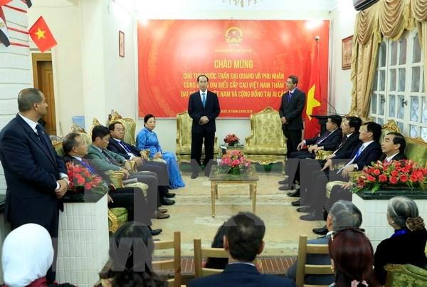 Presidente de Vietnam visita Embajada de su pais en El Cairo hinh anh 1