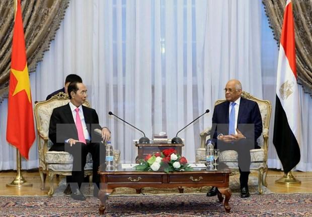 Presidente de Vietnam destaca nexos de amistad tradicional con Egipto hinh anh 1