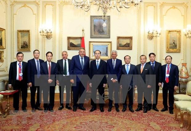 Presidente de Vietnam concluye visita estatal a Egipto hinh anh 1