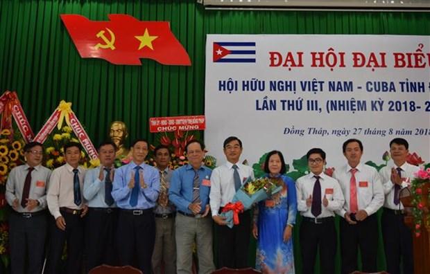 Asociacion de Amistad Vietnam-Cuba contribuye a fomentar las relaciones bilaterales hinh anh 1
