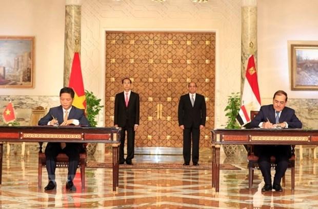 Vietnam y Egipto emiten declaracion conjunta hinh anh 1