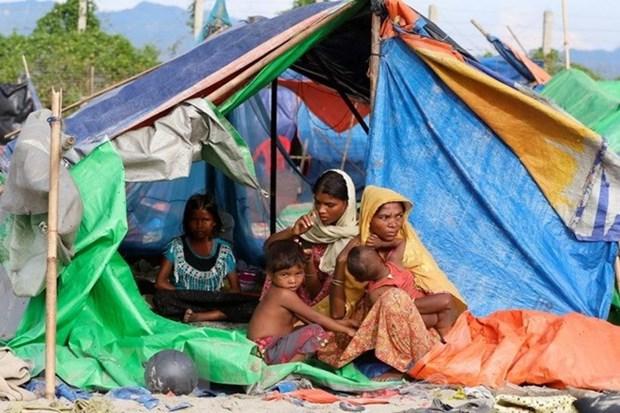 ONU llama a mayores esfuerzos para resolver crisis humanitaria en Myanmar hinh anh 1