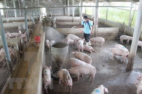 Publican sistema de informacion de salud animal de Vietnam hinh anh 1