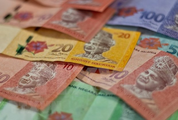Malasia trabaja para reducir deficit presupuestario hinh anh 1