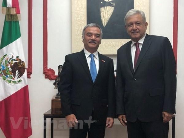 Presidente electo de Mexico confirma deseo de intensificar relaciones con Vietnam hinh anh 1