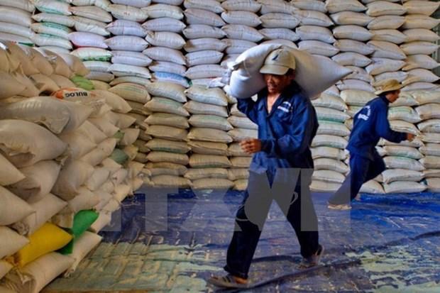 Egipto comprara un millon de toneladas de arroz a Vietnam antes de finalizar este ano hinh anh 1