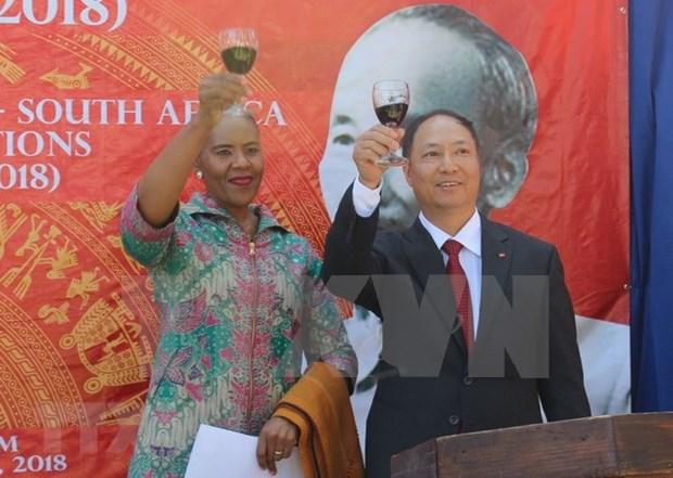 Sudafrica desea aumentar comercio bilateral con Vietnam hinh anh 1