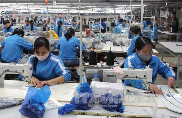 Confecciones textiles de Vietnam se encaminan a dominar el mercado surcoreano hinh anh 1